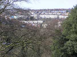 Round Hill through the trees of Woodvale